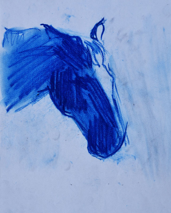 """""""Study of a horse sketch"""", pastel on paper, 21x30cm."""