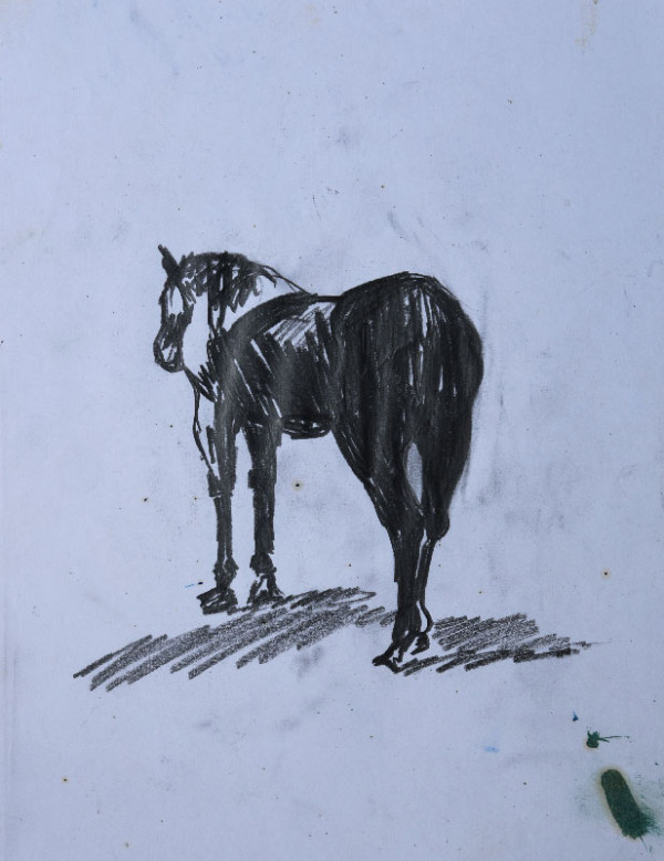 """""""Study of a horse sketch"""", pencil on paper, 21x30cm."""